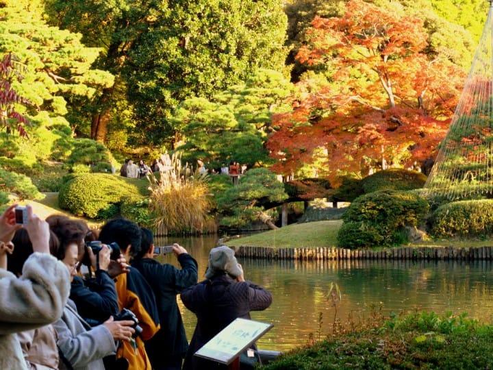 都市裡最貼近自然的奢侈時光:東京九大庭園