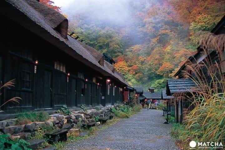 แช่ออนเซ็น ชมใบไม้เปลี่ยนสี ที่ภูมิภาคโทโฮคุ (Tohoku)