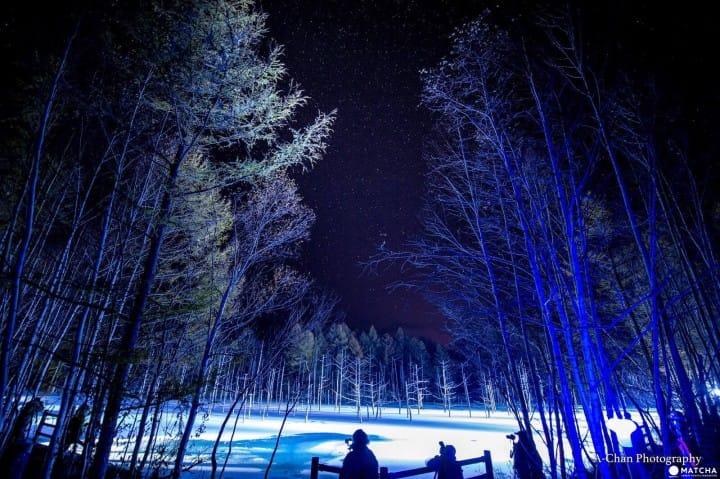 『北海道美瑛』如夢似幻青池點燈:絕景行程推薦