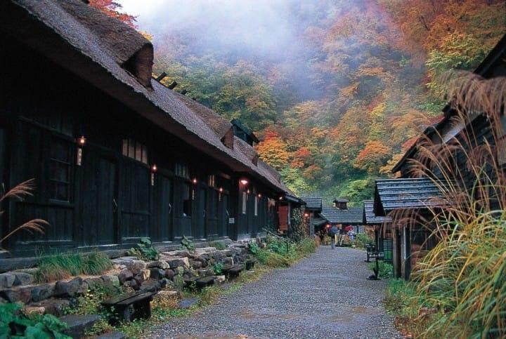 【6 tỉnh Tohoku】 Những địa điểm vừa có thể ngắm lá đỏ vừa có suối nước nóng ở Tohoku