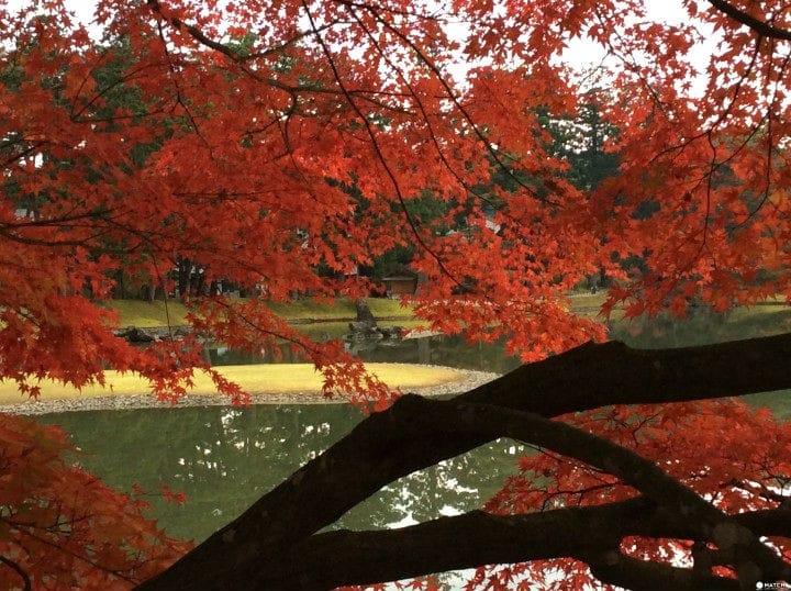 Heian Dreams - Hiraizumi In Autumn