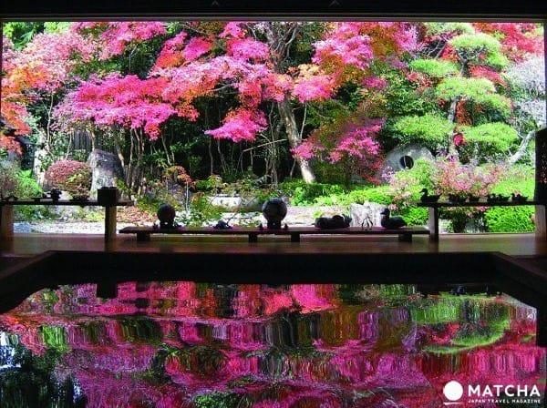 九州長崎私密景點 在地人推薦的絕美紅葉倒影!