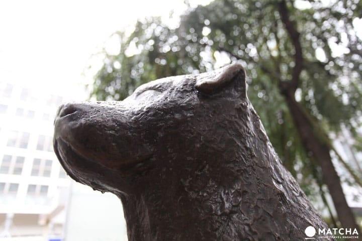 Tempat-Tempat Penting di Shibuya yang Wajib Anda Ingat!