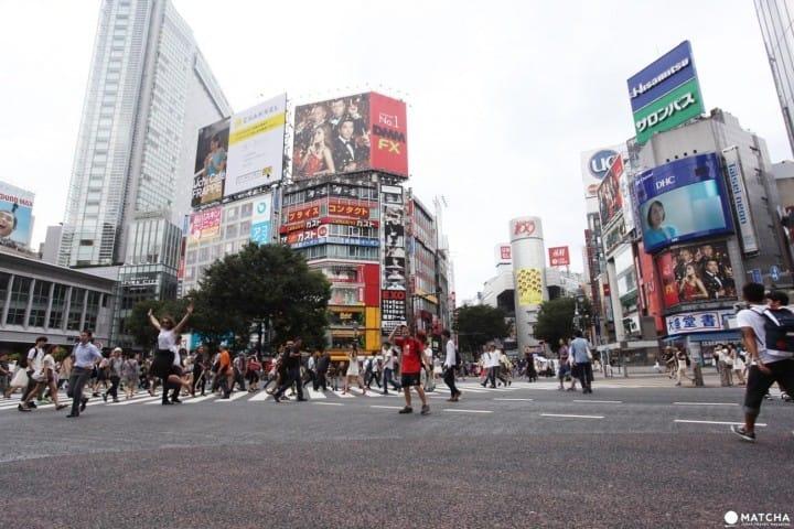 สรุปวิธีไปชิบุย่าจาก「ฮาเนดะ・นาริตะ・โตเกียว・ชินจูกุ」