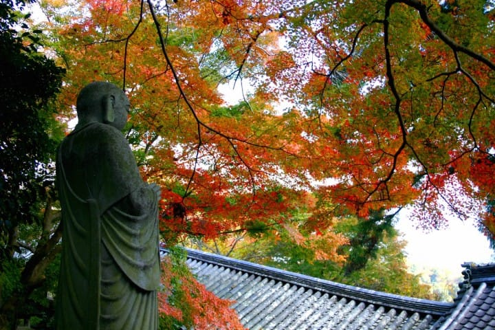 Kamakura Day Trip Model Itinerary - Just A Train Ride From Tokyo!