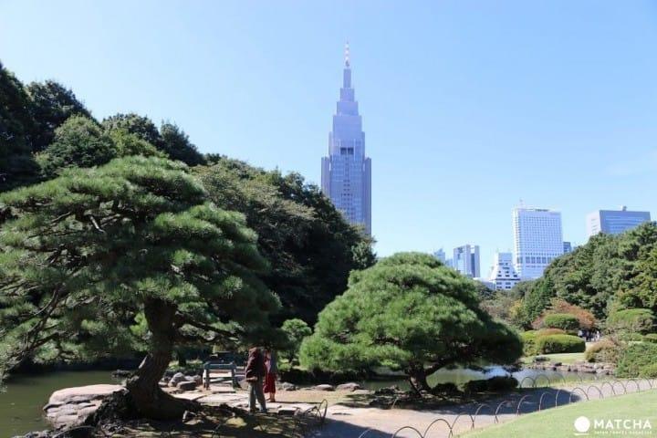 新宿旅游指南!交通、购物、美食住宿全方位完全攻略
