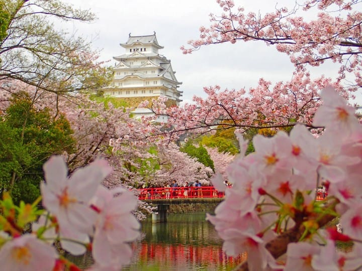Himeji Guide: Reaching Himeji, The Castle, And Other Sightseeing Spots