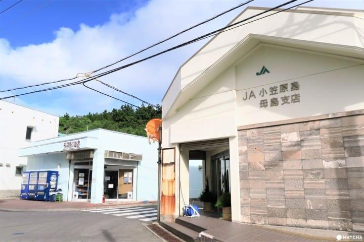 【東京都】世界自然遺産・小笠原「母島」の基本情報