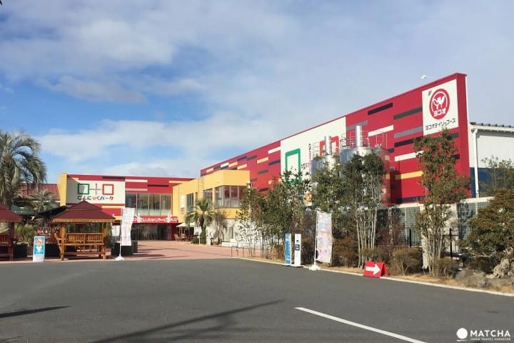 Gunma's Konjac Park - Explore Japan's Health Food Theme Park