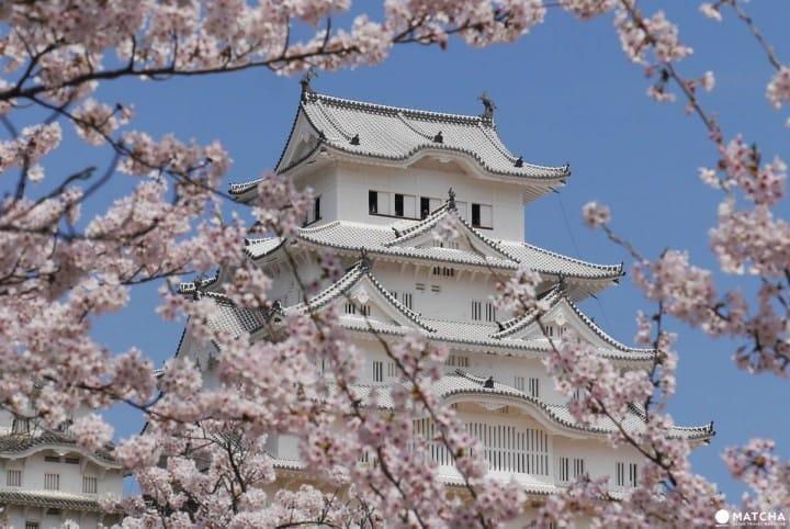 วิธีการเดินทางไปฮิเมจิจากโตเกียว โอซาก้าและเกียวโต  ข้อมูลรถไฟสถานีฮิเมจิ และของฝากด้วย!