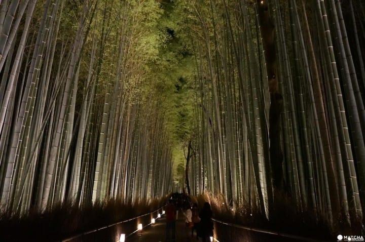 กิจกรรมในฤดูกาลหนาวของเกียวโต การแสดงแสงอันแสนโรแมนติก