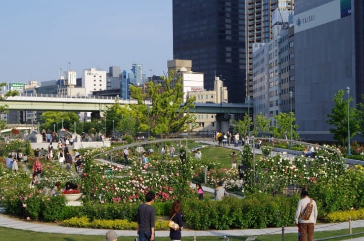 A Secret Garden In Osaka - The Nakanoshima Rose Garden