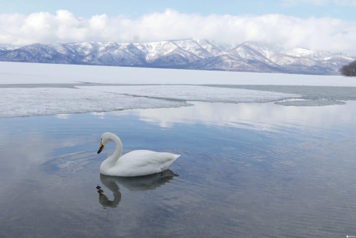 『北海道 道東』根本就是畫啊!蒐集道東三湖美景