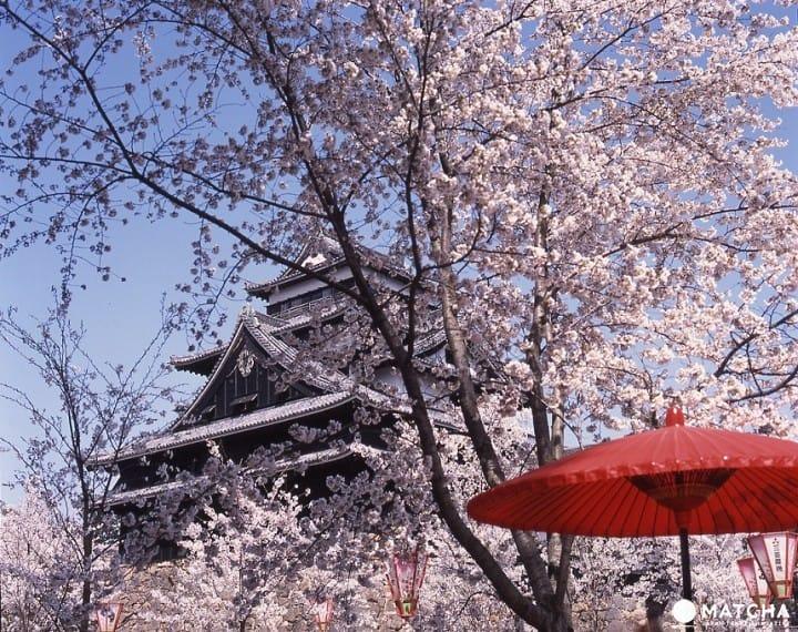 """【จ.ชิมาเนะ】""""ปราสาทมัตสึเอะ"""" แหล่งชมความงดงามทั้ง 4 ฤดูกาล"""
