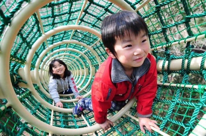 桜並木に家族で遊べる自然公園まで。神奈川県の自然・絶景スポット