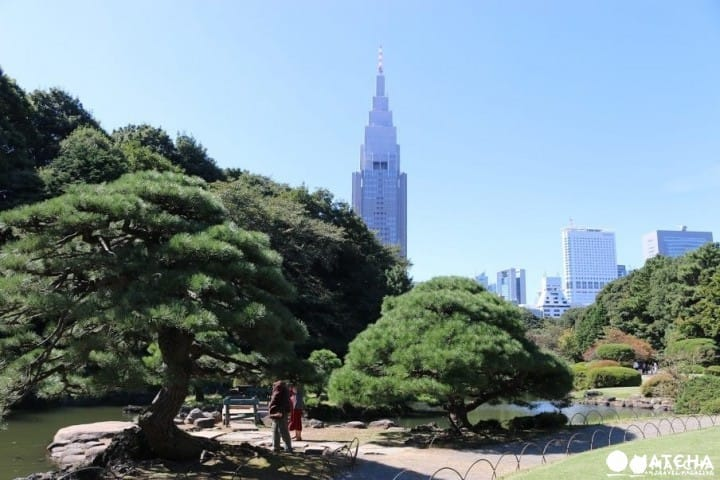 Shinjuku Complete Guide - Popular Places, Shopping And Dining
