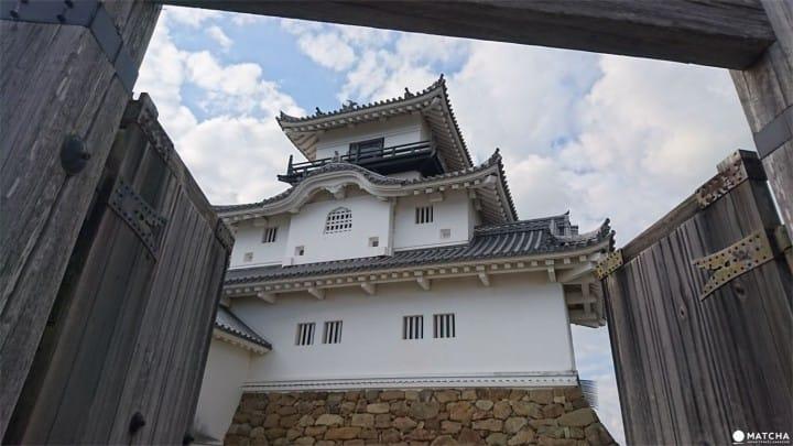 Kakegawa Castle, Shizuoka: An Authentic Castle Experience Awaits You