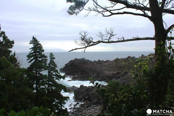 Jogasaki Coast In Izu - Amazing Views Along The Pacific Coast