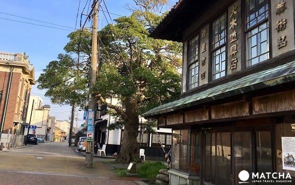 【福井輕旅行】三國老街散策,玩體驗,享美食