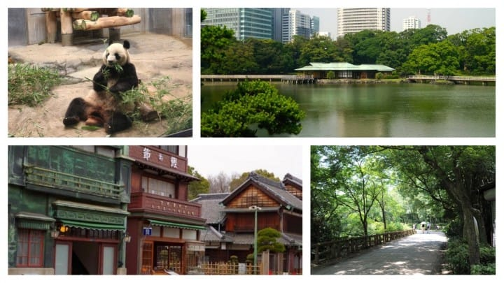 Tokyo Citizen's Day: When Zoos, Museums And Gardens Are Free