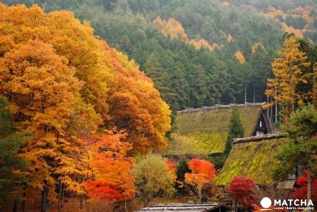 """""""飞騨高山""""旅游指南。景点23选、气候、交通方式等等情报一网打尽~"""
