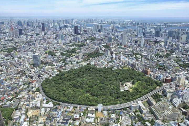 【Tokyo】Công viên thiên nhiên trực thuộc bảo tàng khoa học quốc gia với thiên nhiên phong phú  ~ Thông tin cơ bản, Cách đi ~