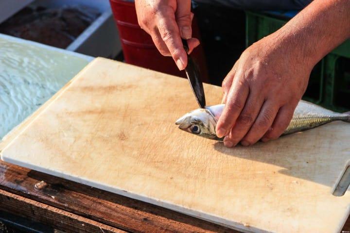 漁市場見學 鹿兒島市中央卸売賣市場