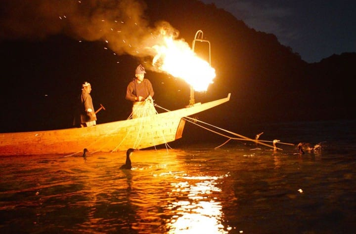 Cormorant Fishing - 5 Spots To Witness A Treasured Fishing Tradition