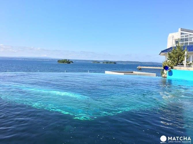 【石川县】碧海蓝天还有海豚伴随!能登岛景点民宿推荐