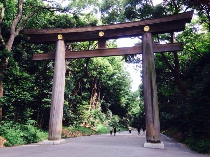 【วันฝนพรำ】วันไหนฝนไม่ตกอย่าได้รอช้า   ออกไปดูดอกไอริสญี่ปุ่นที่สวนศาลเจ้าเมจิกันดีกว่า