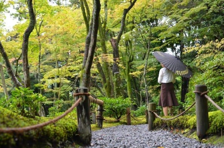 京都をお散歩ー和傘