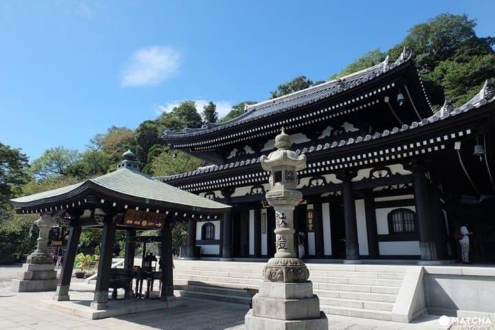 Tham quan chùa Hasedera nổi tiếng với hoa cẩm tú cầu và ngắm nhìn thành phố Kamakura.
