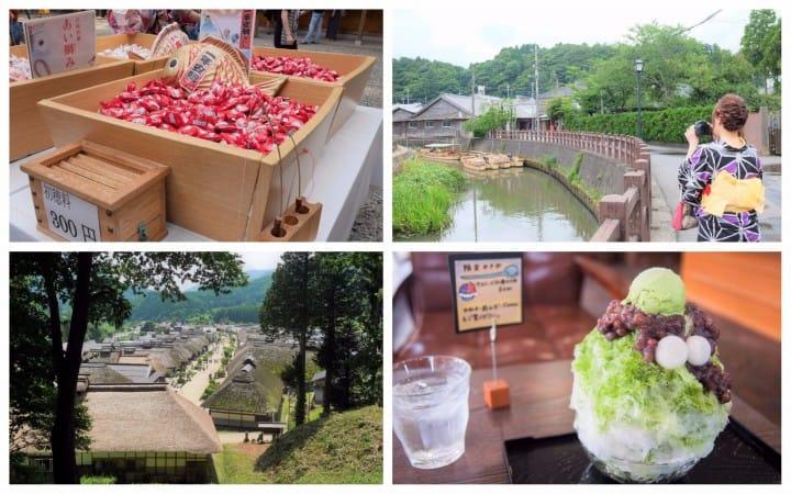 """เว็บไซต์รวมแผนเที่ยวโตเกียวและรอบๆ สุดเจ๋ง """"STEP INTO GREATER TOKYO"""" เปิดตัวแล้ว!!"""