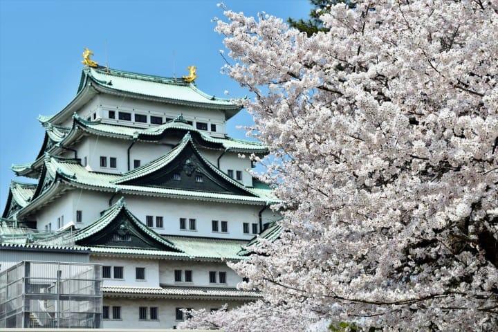 日本東海地方 愛知名古屋城