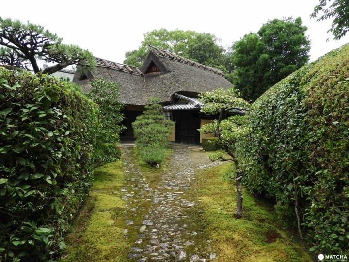 在奈良三大名園之一慈光院享用抹茶與和式點心