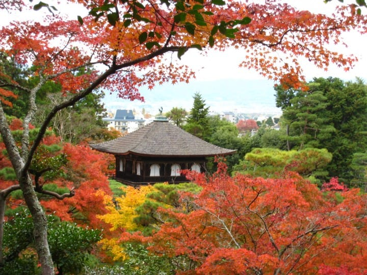 Kyoto's Autumn Leaves In 2017 - 14 Must-See Fall Foliage Spots