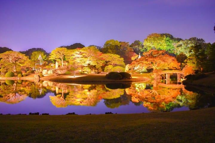 【2018年版】秋天的美景!在东京欣赏红叶的10个精选景点推荐