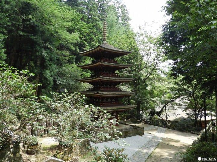 自然と調和した佇まいが美しい、奈良県「室生寺」