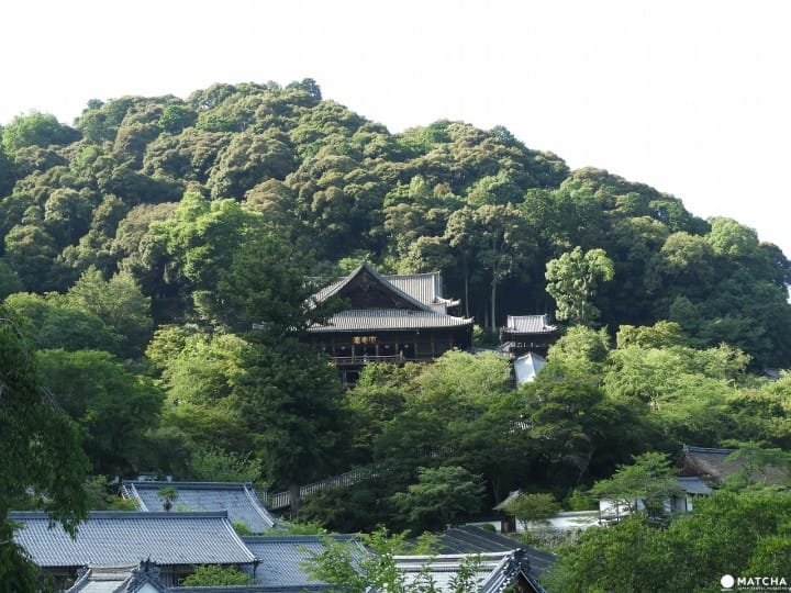 399段の階段を登って本堂へ、奈良県「長谷寺」の見どころ