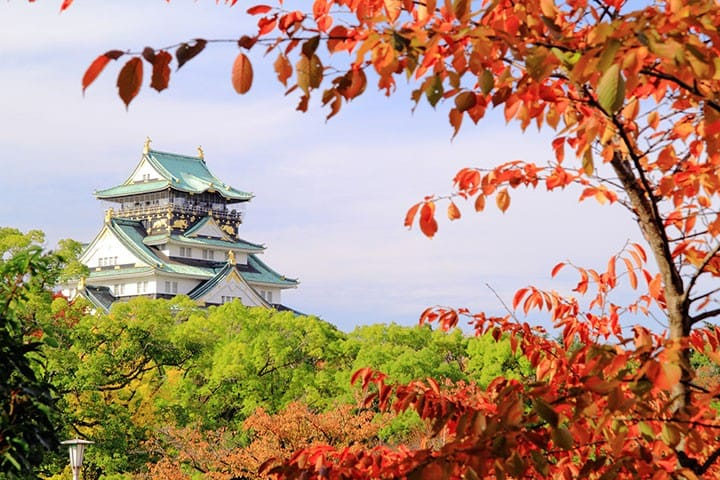 ไกด์เที่ยวโอซาก้าสำหรับมือใหม่! ปราสาทโอซาก้า ชินไซบาชิ นัมบะ พิพิธภัณฑ์สัตว์น้ำไคยูคัง และโรงแรมครบครัน