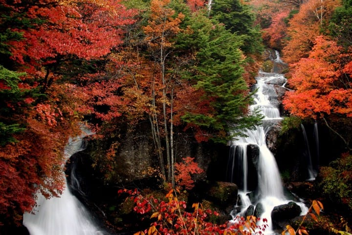 Visit Nikko In The Fall! A One-Day Autumn Leaves Tour Plan