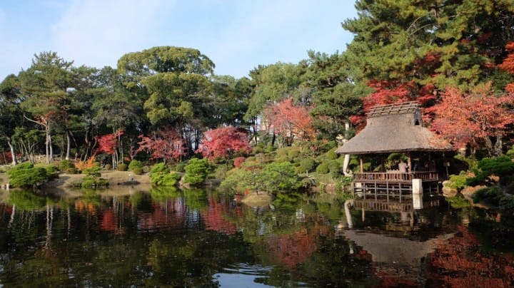 Shukkeien Garden, Hiroshima - Highlights, Seasonal Events And Access