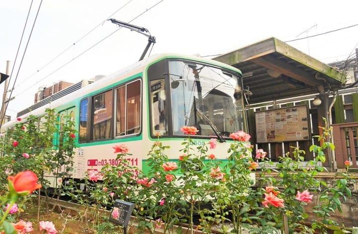 與叮叮作響的路面電車荒川線,進入東京下町老時光