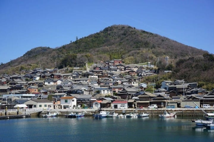 Kagawa's Cat Island Ogijima - Play With Cats And See Beautiful Art
