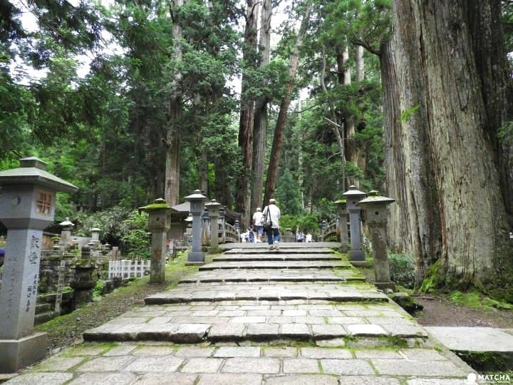 Mount Koya - The Sacred Land Of Japanese Buddhism
