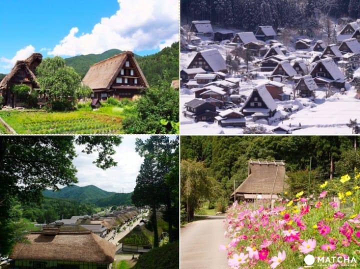 走訪日本三大茅葺部落,見證晴耕雨讀的舊時農家生活