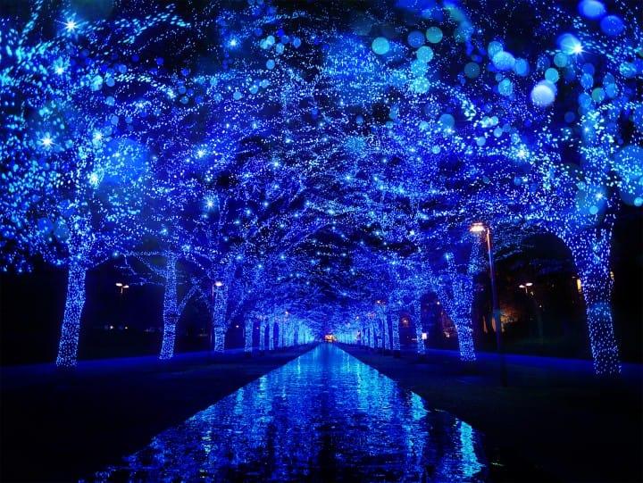 2017東京聖誕景點燈飾青の洞窟 SHIBUYA