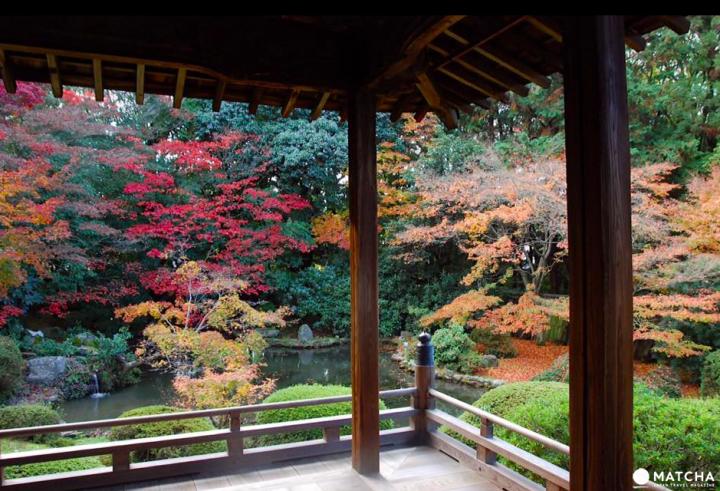 【京都】賞楓旺季時最快的移動方式!地鐵東西線賞楓篇