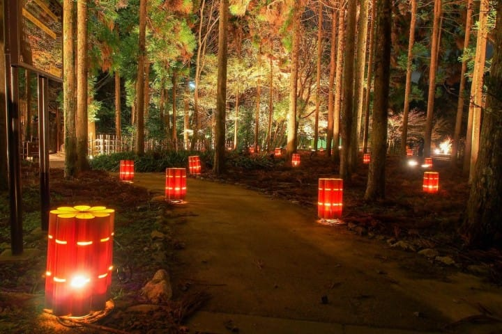 Arashiyama Hanatoro: A Romantic Illumination Event In Kyoto! 2017