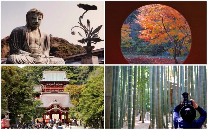15 Things To Do In Kamakura For A Memorable Trip